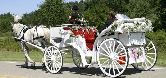 location vehicule pour mariage u car 33. Black Bedroom Furniture Sets. Home Design Ideas
