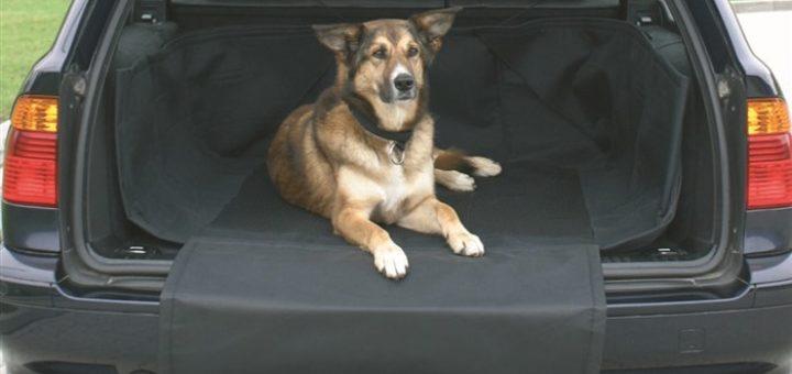 protection de coffre de voiture pour chien u car 33. Black Bedroom Furniture Sets. Home Design Ideas